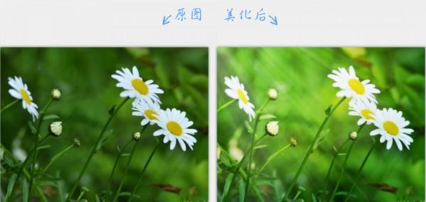 2345看图王最新官方正式版下载