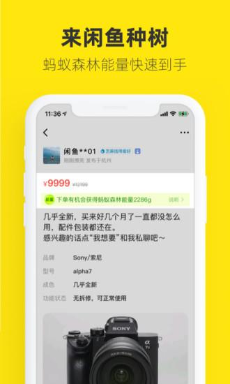 闲鱼app免费下载